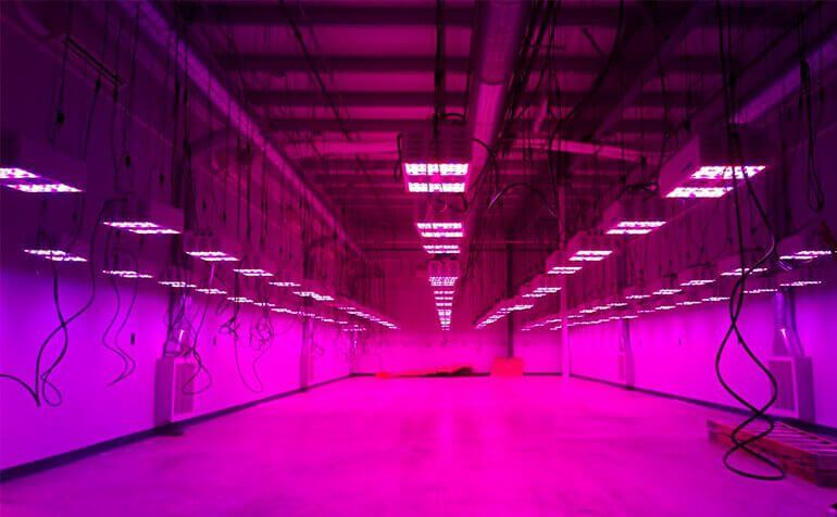Demystifying Lumens, Lux and PAR