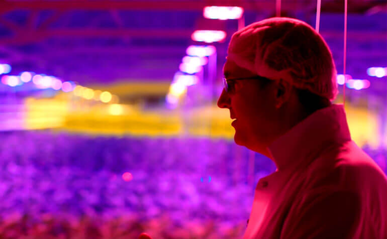 Watch How Cannabis Enterprise Aphria is Using LumiGrow Smart LEDs